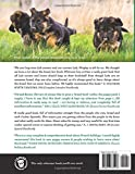 The German Shepherd Handbook: The Essential Guide