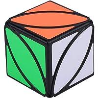Dilwe Cubo Magico, Puzzle Twist Cube Juego Profesional Educativo Cubo de Velocidad Regalo Adulto Ninos Juguete