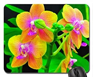Orchids Mouse Pad, Mousepad (Flowers Mouse Pad)