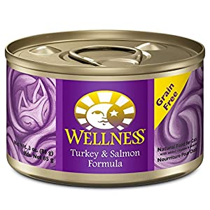 Wellness Complete Health Natural Canned Grain Free Wet Cat Food, Turkey & Salmon Pate, 3-Ounce Can (Pack of 24) 45