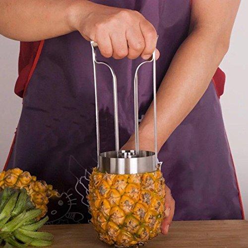 Take Bokit Pineapple Slicers, Stainless Steel Fruit Corers, Pineapple Peeler occupation