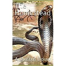 The Homestead (The Tango Boys Book 1) (English Edition)