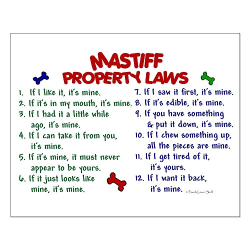 Property Laws 2-16