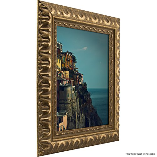 Craig Frames Bravado Ornate Antique Bronze Picture Frame, 24
