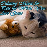 Calming Music for Pets for While You Are Gone