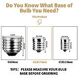 24-Pack Edison Replacement Light Bulbs,7-Watt E17