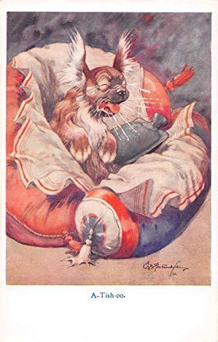 Greetings Dog Sneezing Sick Comic Vintage Postcard JJ649898