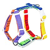 Pet Passion International LLC. PPARK® DUAL D-RING ADJUSTABLE STEP-IN HARNESS WITH QUICK RELEASE (Multi-Color (Blue), Large)