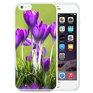 Crocuses Flower Macro (2) Durable High Quality iPhone 6 Plus 5.5 Inch TPU Case