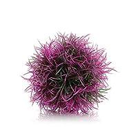 bola de color púrpura biOrb