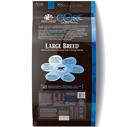 Wellness CORE Natural Grain Free Dry Dog Food, Large Breed, 26-Pound Bag by WELLNESS CORE (Image #1)