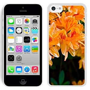 NEW Unique Custom Designed iPhone 5C Phone Case With Light Orange Flowers_White Phone Case