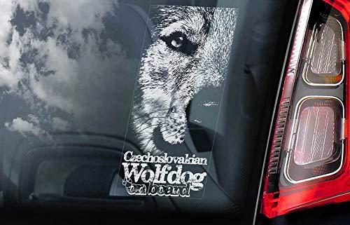 Motivo: Lupo cecoslovakian on Board CELYCASY V04 Vlcak Cane Lupo Cecoslovacco Adesivo per finestrino Auto