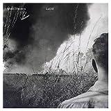 Lucid /  Matt Stevens
