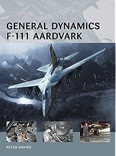 F 111 aardvark walk around color series no 57 ken neubeck general dynamics f 111 aardvark air vanguard fandeluxe Gallery