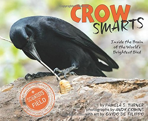 Crow Smarts: Inside the Brain of the World's Brightest Bird (Scientists in the Field Series) (Best Bird In The World)