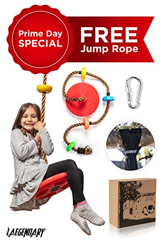 (Climbing Rope Tree Swing with Platforms and Disc Swings Seat - Playground Swingset Accessories Outdoor for Kids - Trees House Tire Saucer Swing Outside Playset Toys - Bonus Carabiner and 4 Feet Strap )