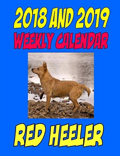 red heeler calendar - 5