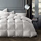 Globon Winter Washable Texcote Nano-Treated White Goose Down Comforter King Size, 60 OZ, 700 Fill Power, 400 Thread Count 100% Cotton Shell, Down-proof Hypoallergenic, with Corner Tabs, White