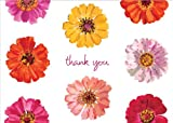 Entertaining with Caspari Zinnias Thank You Notes, Set of 8