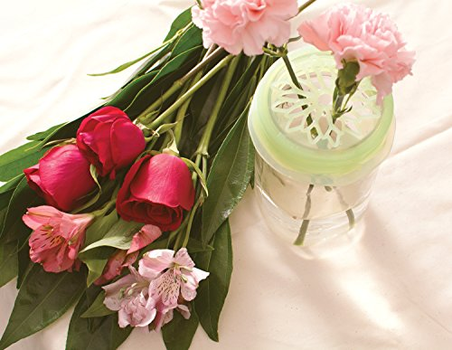 Blossom Daisy Mason and Canning Jar Flower Arranging Frog Lid Cap, Silicone, For Wide Mouth Mason Jars, 4-Inches
