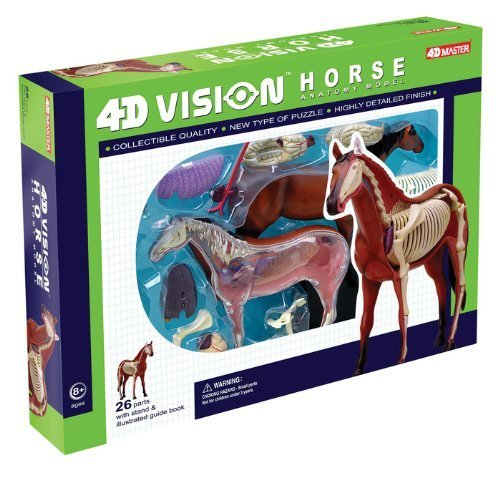 Tedco 4D Vision Horse Model by TEDCO