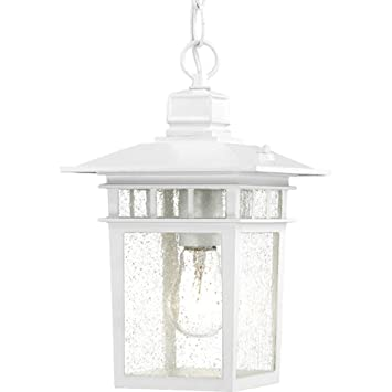 Nuvo Lighting 60/4954 Cove Neck One Light Hanging Lantern 100 Watt A19 Max.