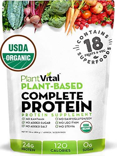 New! Plant Based Protein Powder w 18 SUPERFOODS, Veggies & Probiotics: Kale, Beets, Spirulina & More. Vegan, All BCAAs, Organic, Non-GMO, Gluten Free. 16oz