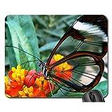 transparent Mouse Pad, Mousepad (Butterflies Mouse Pad)