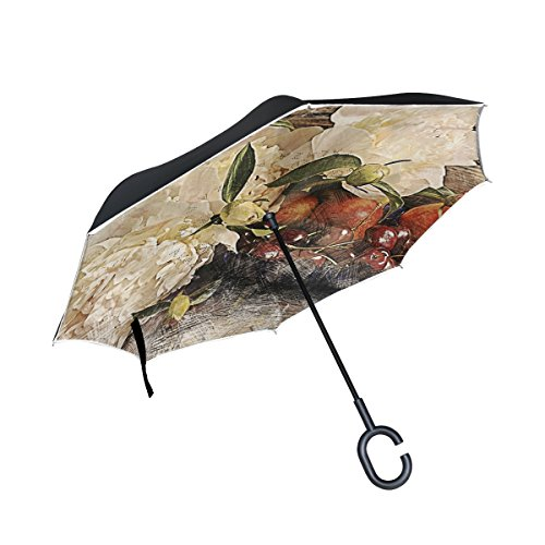 ALAZA Inverted Umbrella Peonies Painting Flowers UV Anti Windproof Reverse Folding Umbrellas with C-Shape Handle for Car Outdoor Travel (Peony Shape)