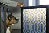 Fusion Gates Baby & Dog Gate featuring Gold Lattice Art Screen Design (Black, 52'' - 60'')