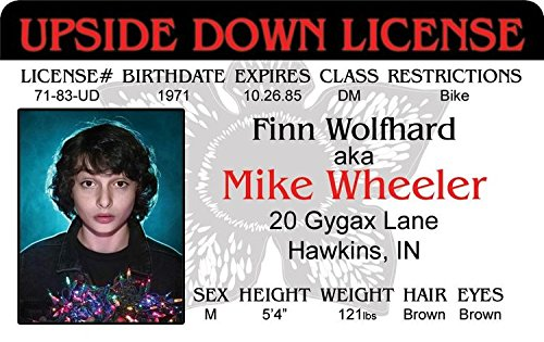 Signs 4 Fun Nstidm Stranger Mikes Drivers License