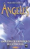 Ángeles, Malcolm Godwin, 8479271523