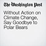 Without Action on Climate Change, Say Goodbye to Polar Bears | Darryl Fears