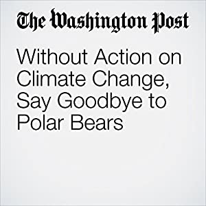 Without Action on Climate Change, Say Goodbye to Polar Bears