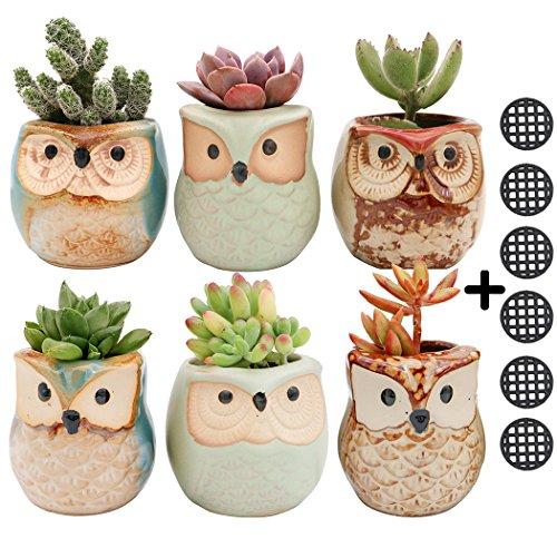 6pcs Owl Pot 2.5 Inch Succulent Plant Pot Mini Ceramic Flower Cactus Container Small Bonsai Pots with Hole