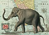 "Elephant on Map of India Vintage Poster Print 20"" x 28"""