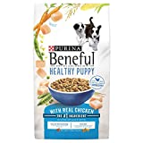 Purina Beneful Healthy Puppy With Real Chicken (Healthy Puppy With Real Chicken, 15.5 lb. – 3 Bag)