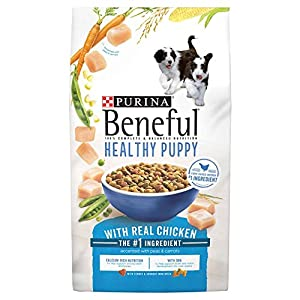 Purina Beneful Healthy Puppy With Real Chicken (Healthy Puppy With Real Chicken, 15.5 lb. - 2 Bag)
