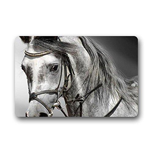 LiFei Business Melancholy horse Non-slip door mat Custom Doormat Indoor/Outdoor Personalized Doormat 18