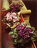 img - for FLOWERING HOUSE PLANTS The Time-Life Encyclopedia of Gardening book / textbook / text book