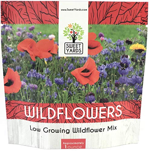 Wildflower Seeds Low Growing and Container Mix - 1 Ounce Over 7,500 Open Pollinated Annual and Perennial Seeds