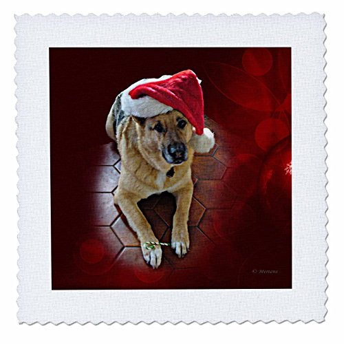 3dRose Sandy Mertens Christmas Animals - Santa Hat on a German Shepherd Dog with a Candy Cane - 22x22 inch quilt square (qs_269513_9)