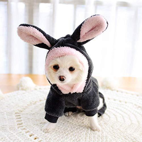 Pet Bunnies In Costumes - Innopet Halloween Pet Costume Dog Clothes,Hoodie