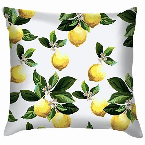 Citrus Hand Drawn Lemon Cotton Throw Pillow Case Cushion Cover Home Office Decorative, Square 22X22 Inch ()