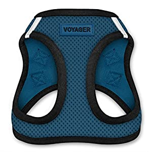 Voyager All Weather No Pull Step-in Mesh Dog Harness with Padded Vest, Best Pet Supplies, Large, Blue Base