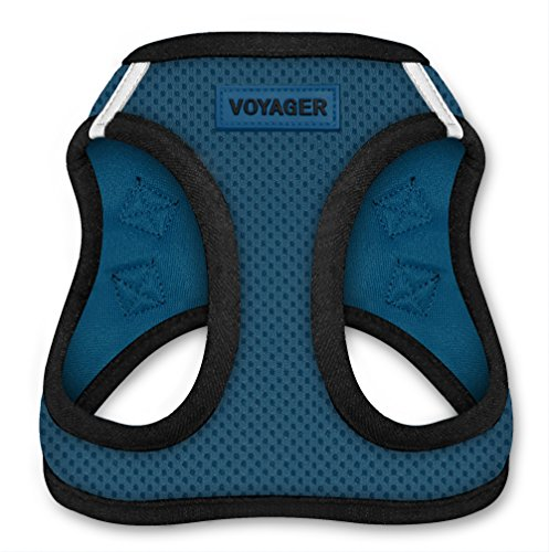 Voyager Step-In Air Dog Harness - All Weather Mesh, Step In Vest Harness for Small and Medium Dogs by Best Pet Supplies - Blue Base, Medium (Chest: 16' - 18')