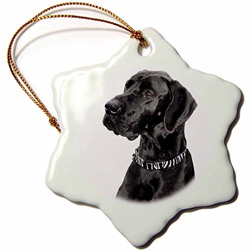 3dRose Black Great Dane Snowflake Porcelain Ornament, 3-Inch ()