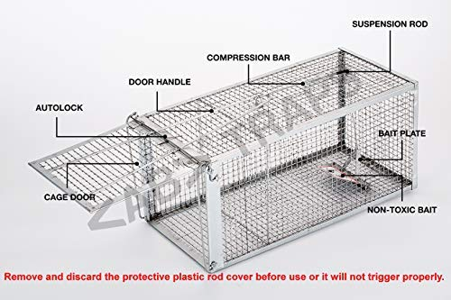 "AB Traps Pro-Quality Live Animal Humane Trap Catch and Release Rats Mouse Mice Rodents and Similar Sized Pests - Safe and Effective - 10.5"" x 5.5"" x 4.5"" Single Door"