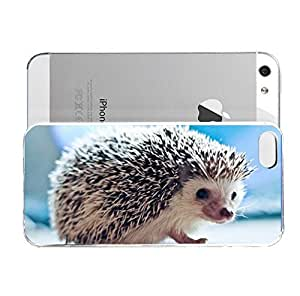 iPhone 5&5S cover case Animals Hedgehog Zzz1535